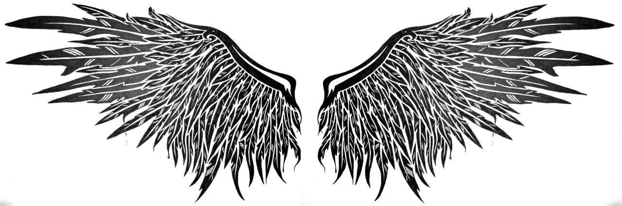 dark angel wings by SwarzezTier PlusPng.com  - Dark Angel PNG