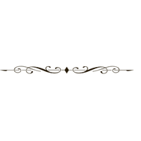 Decorative Line Black PNG