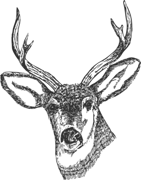 Deer Head clip art free vector - Deer Head PNG Black And White