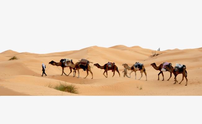 Desert camel, Desert, Dust, Camel PNG Image and Clipart - Desert Camel PNG