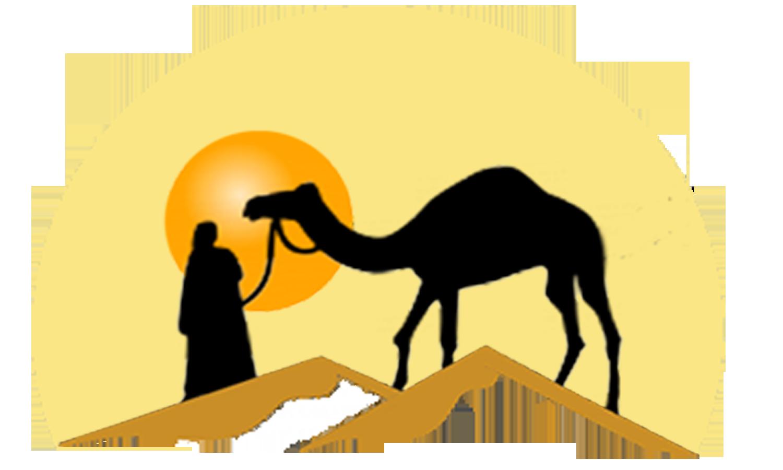 morocco-explora-tours-and-adventures-desert-trips PlusPng.com  - Desert Camel PNG