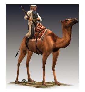 Shaturnal Camel Gunners - Desert Camel PNG