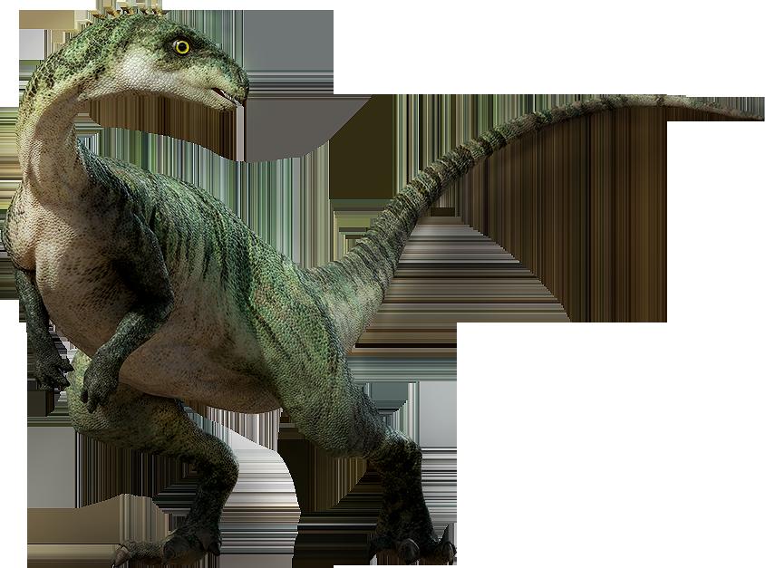 Dinosaur Png Image PNG Image - Dinosaur Bones PNG HD