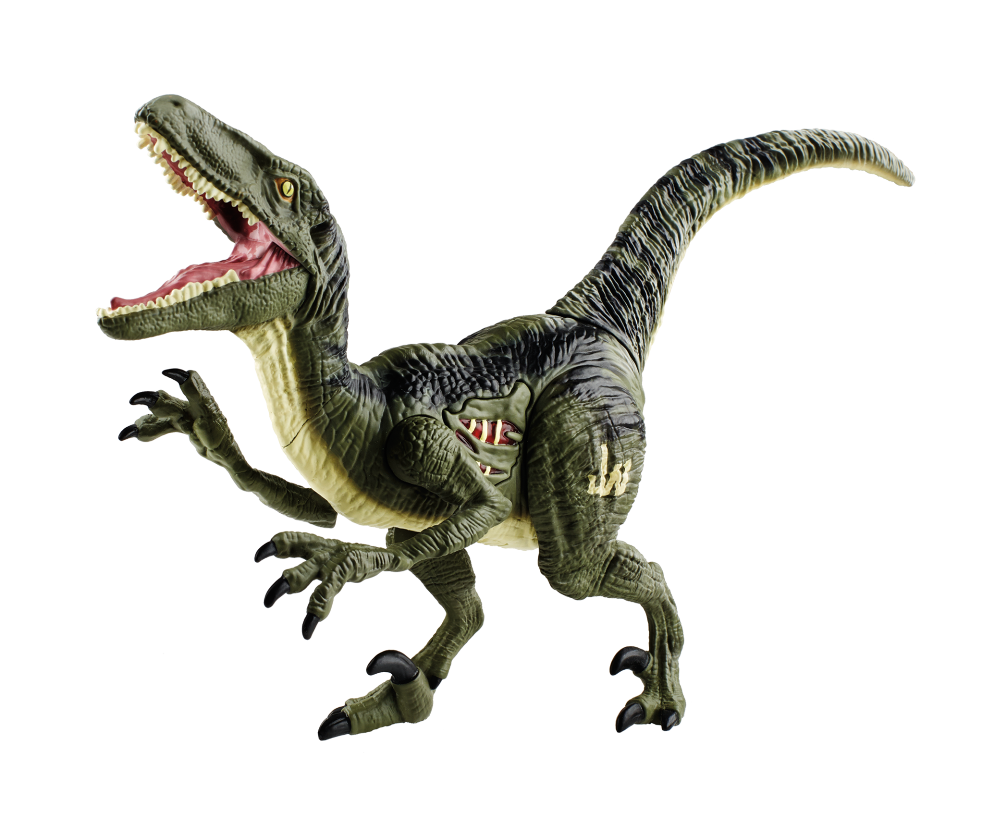Dinosaur Bones PNG HD - 123605