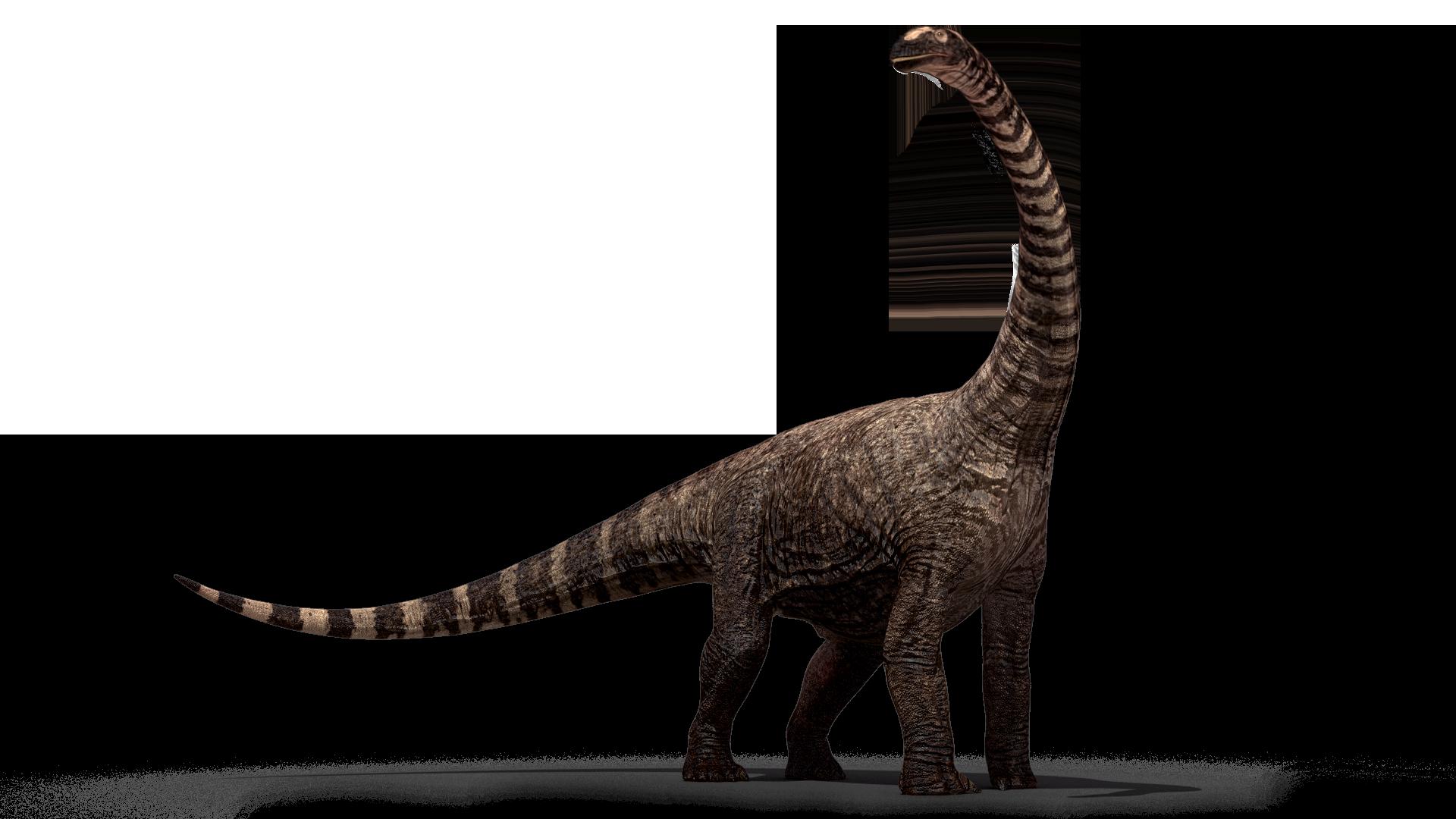 Rhohetosaurus - Dinosaur Bones PNG HD