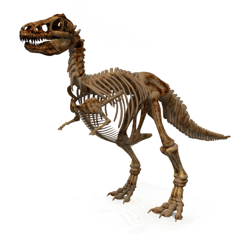 Dinosaurs.png