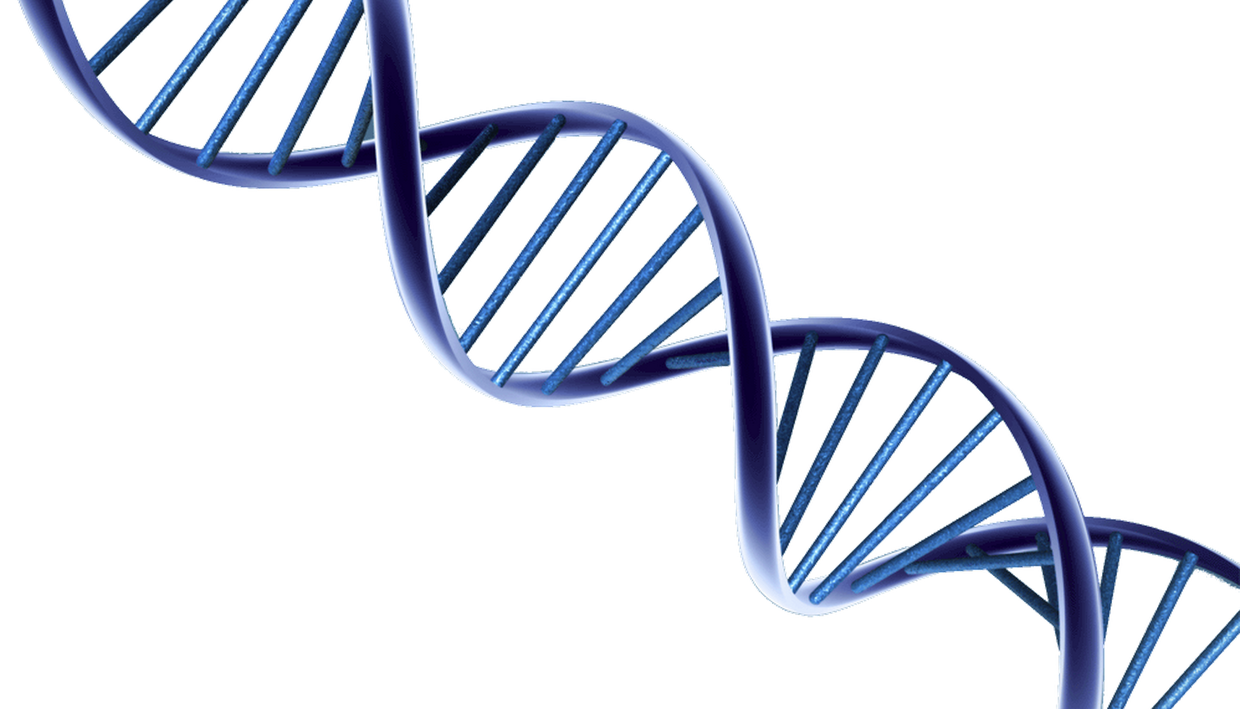 Dna PNG HD - 139593