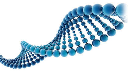 Dna PNG HD - 139603