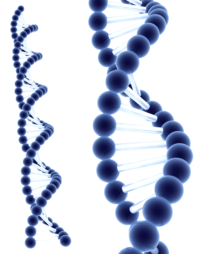 Blue DNA by Milan-R - Dna PNG HD