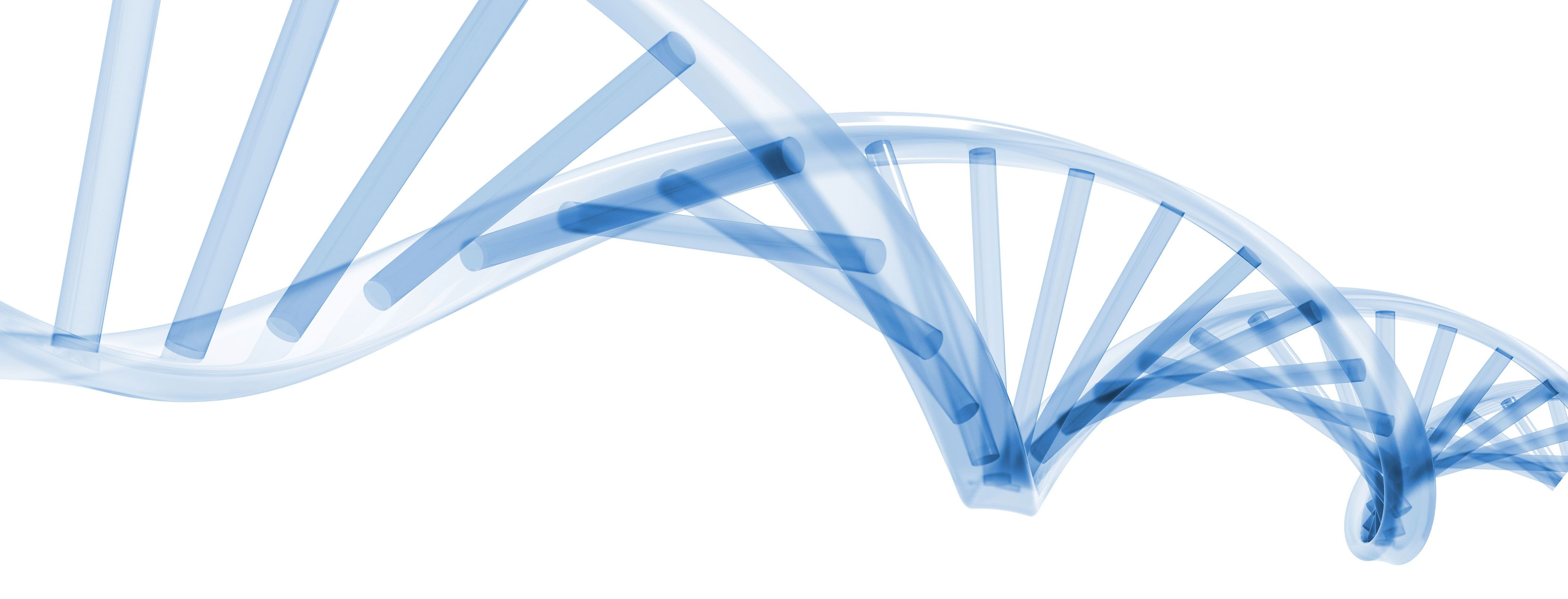 Dna PNG HD - 139598
