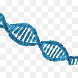 Ultra HD blue DNA - Dna PNG HD