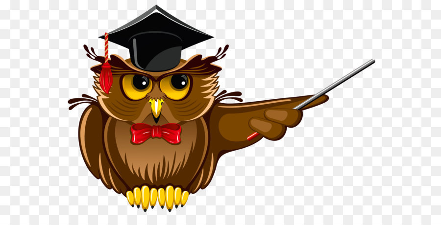 Doctorate Academic degree Doctor of Philosophy Student University - Owl  Teacher PNG Clipart - Doctoral Degree PNG