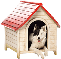 Dog in Kennel - Dog Kennel PNG