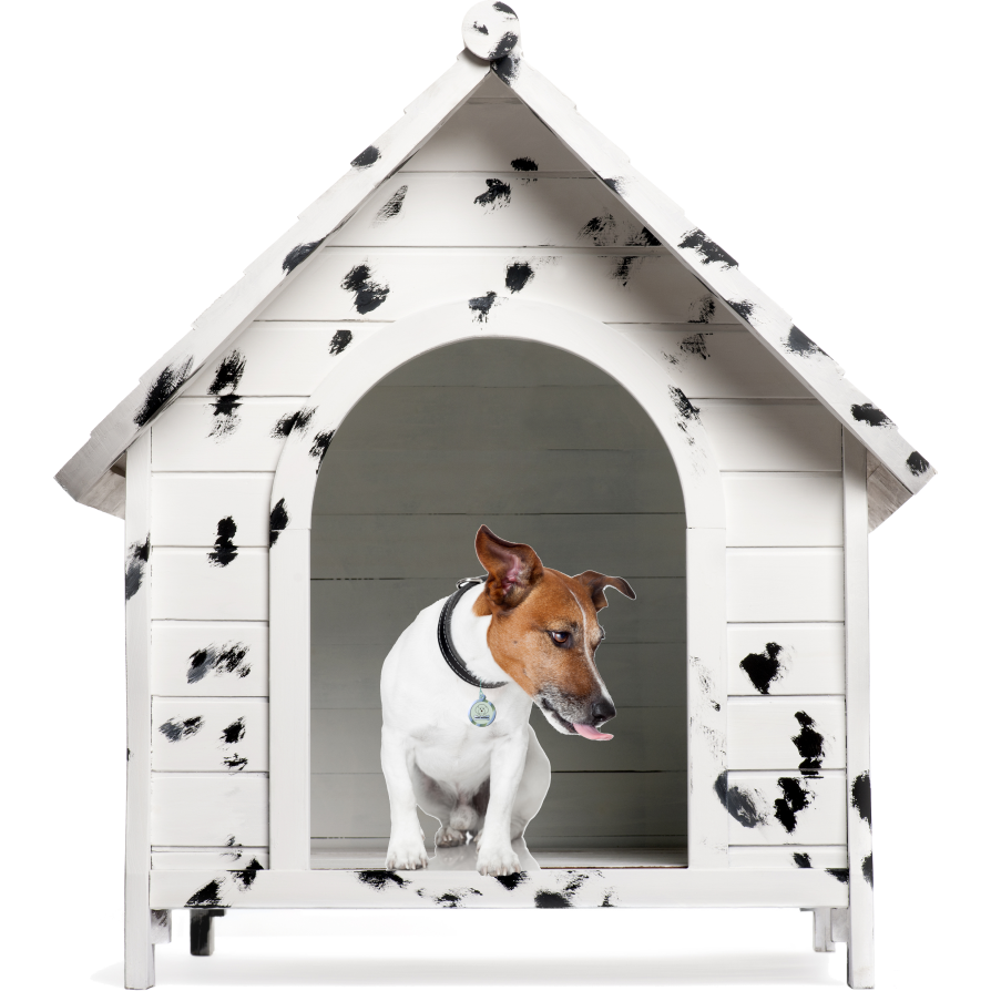 The Kennel Club in the Dog House - Dog Kennel PNG