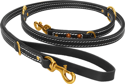 Dog Leash PNG HD - 140122