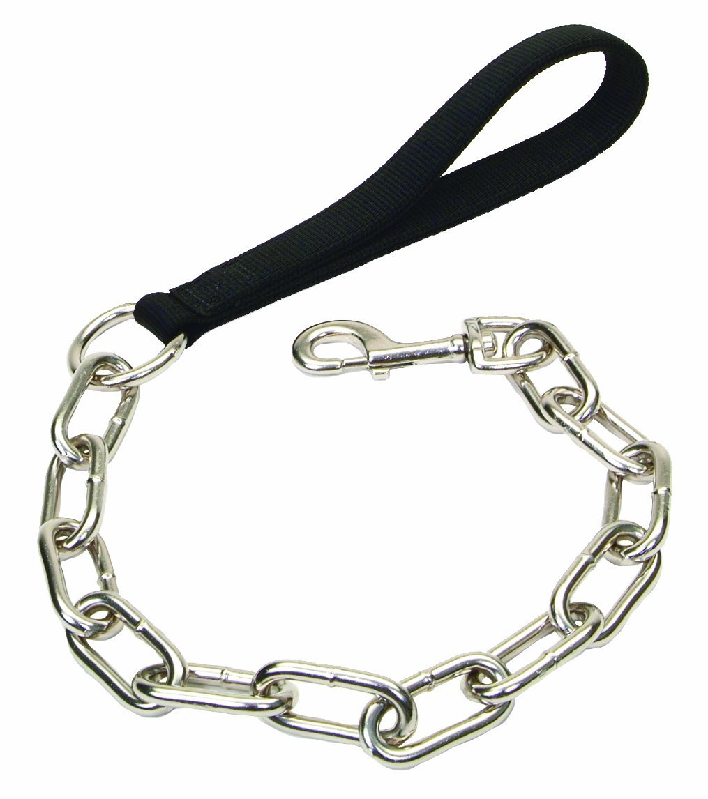 Dog Leash PNG HD - 140125