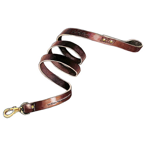 Dog Leash PNG HD - 140121