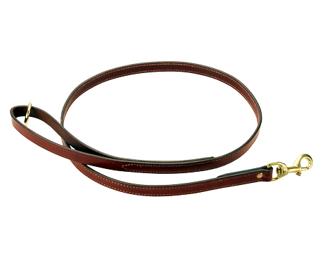 Dog Leash PNG HD - 140132