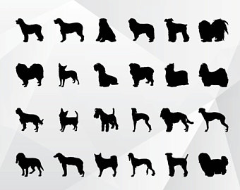 24 Dog svg,png,jpg,eps/Dog clipart for Print,Design - Dog PNG Jpg