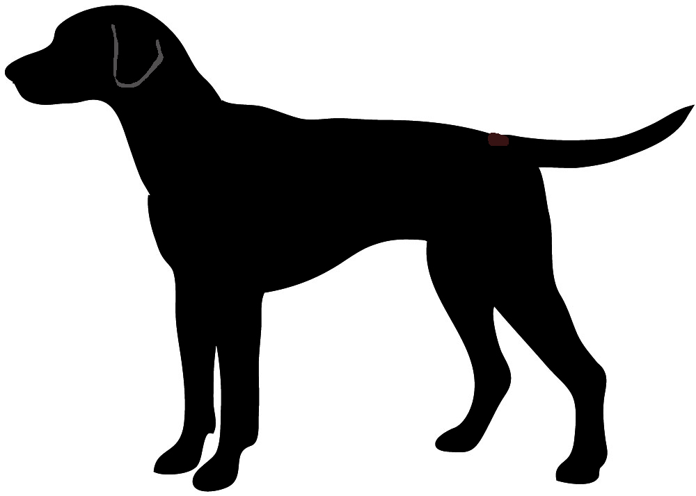 Corgie Pembroke, dog silhouette dalmatian - Dog PNG Jpg