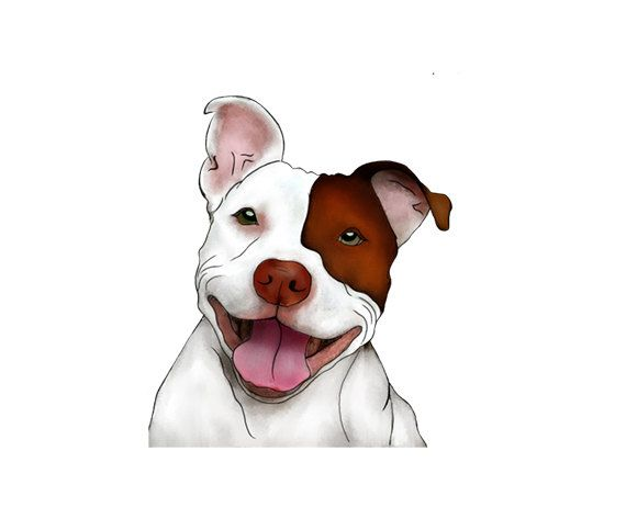 Happy Smiling Pitbull Illustration - Man Cave Art - Brown and White Dog -  Play Room Art - Digital Clipart - PNG - JPG - Limited Commercial by on Etsy - Dog PNG Jpg