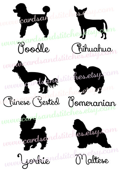 Small Dog Silhouettes Svg - Pomeranian - Poodle - Digital Cutting File -  Instant Download - - Dog PNG Jpg