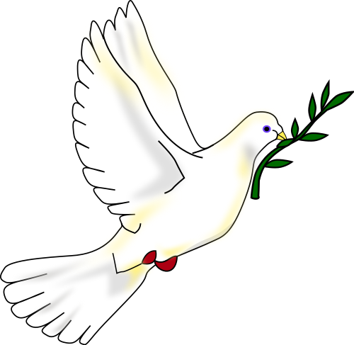 Dove PNG - 112140