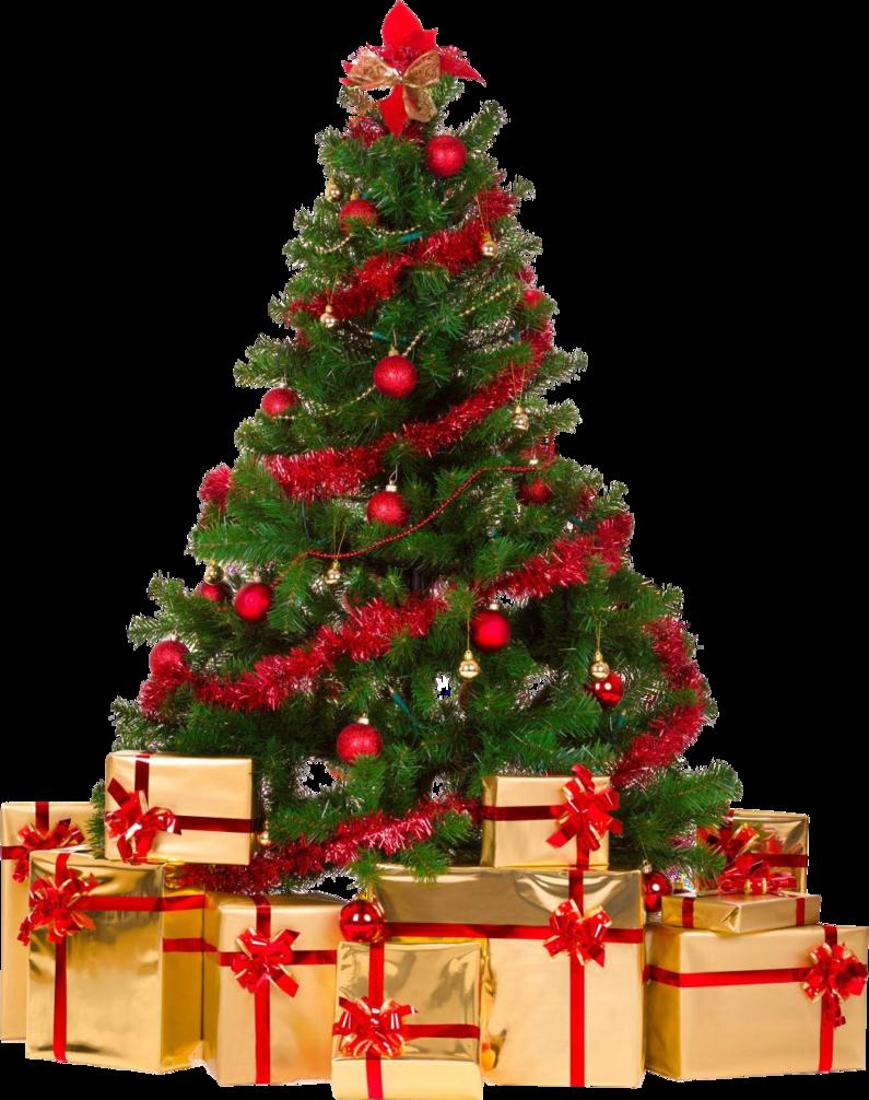 Christmas Tree PNG - 6106
