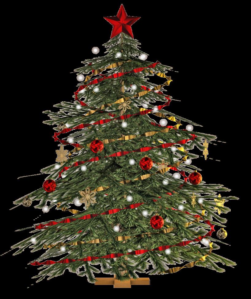 Christmas Tree PNG - 6111