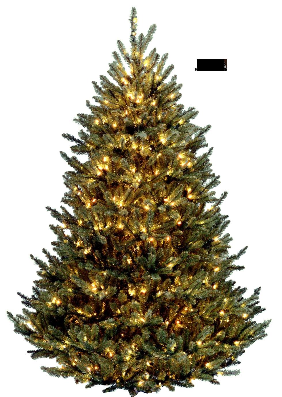 Christmas Tree PNG - 6117