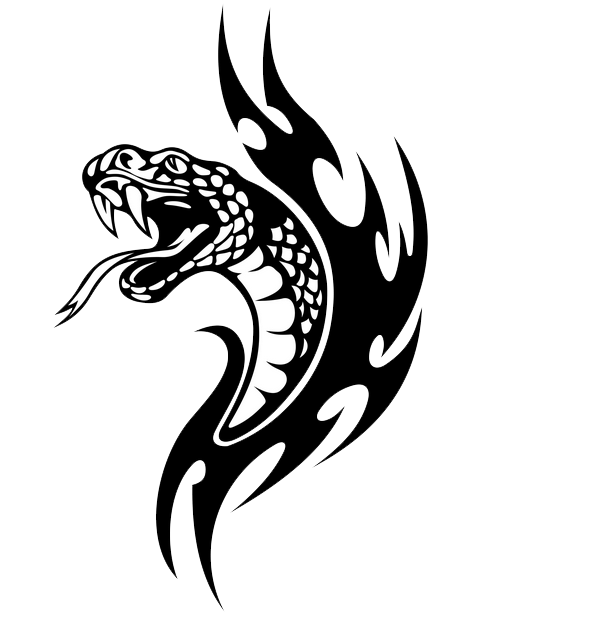 Snake Tattoo PNG - 3580