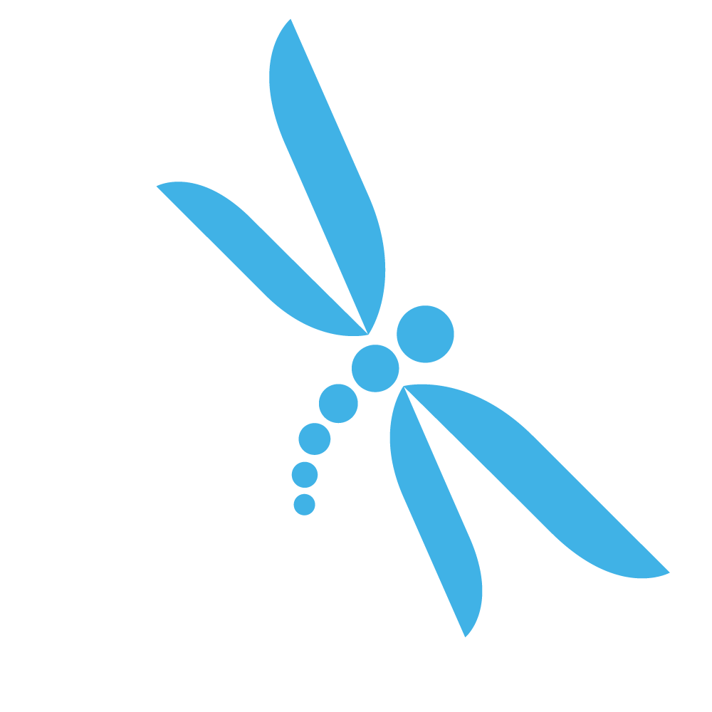 Dragonfly.png (1000×1000) - Dragonfly PNG