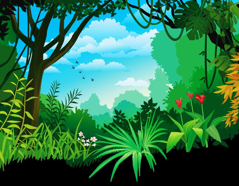 5.png. UrwaldbaumVektor HintergrundDschungelWildnisWandbilderPapier - Dschungel Hintergrund PNG