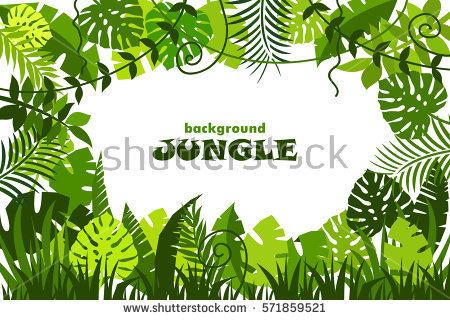 decorative tropical jungle background. vector illustration - Dschungel Hintergrund PNG