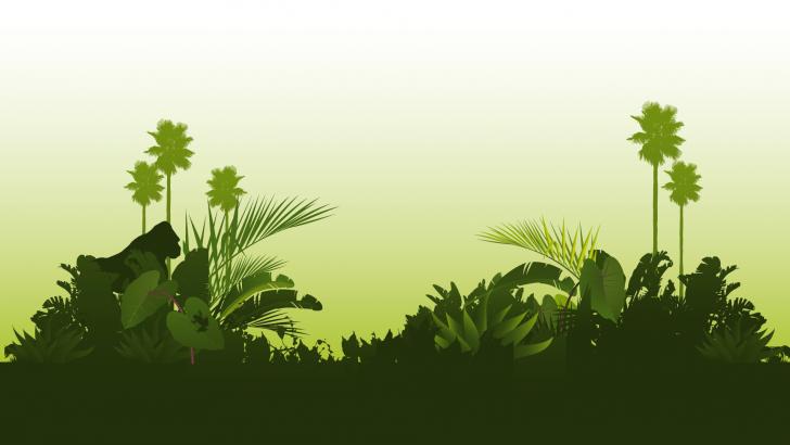 Jungle Desktop Wallpapers - Dschungel Hintergrund PNG