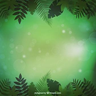 Jungle vegetation background - Dschungel Hintergrund PNG