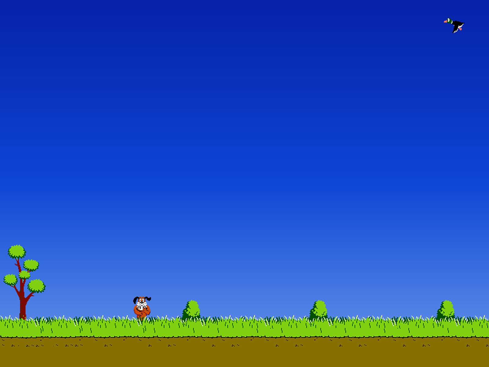 Duck Hunting Backgrounds - Wallpaper Cave - Duck Hunting PNG HD