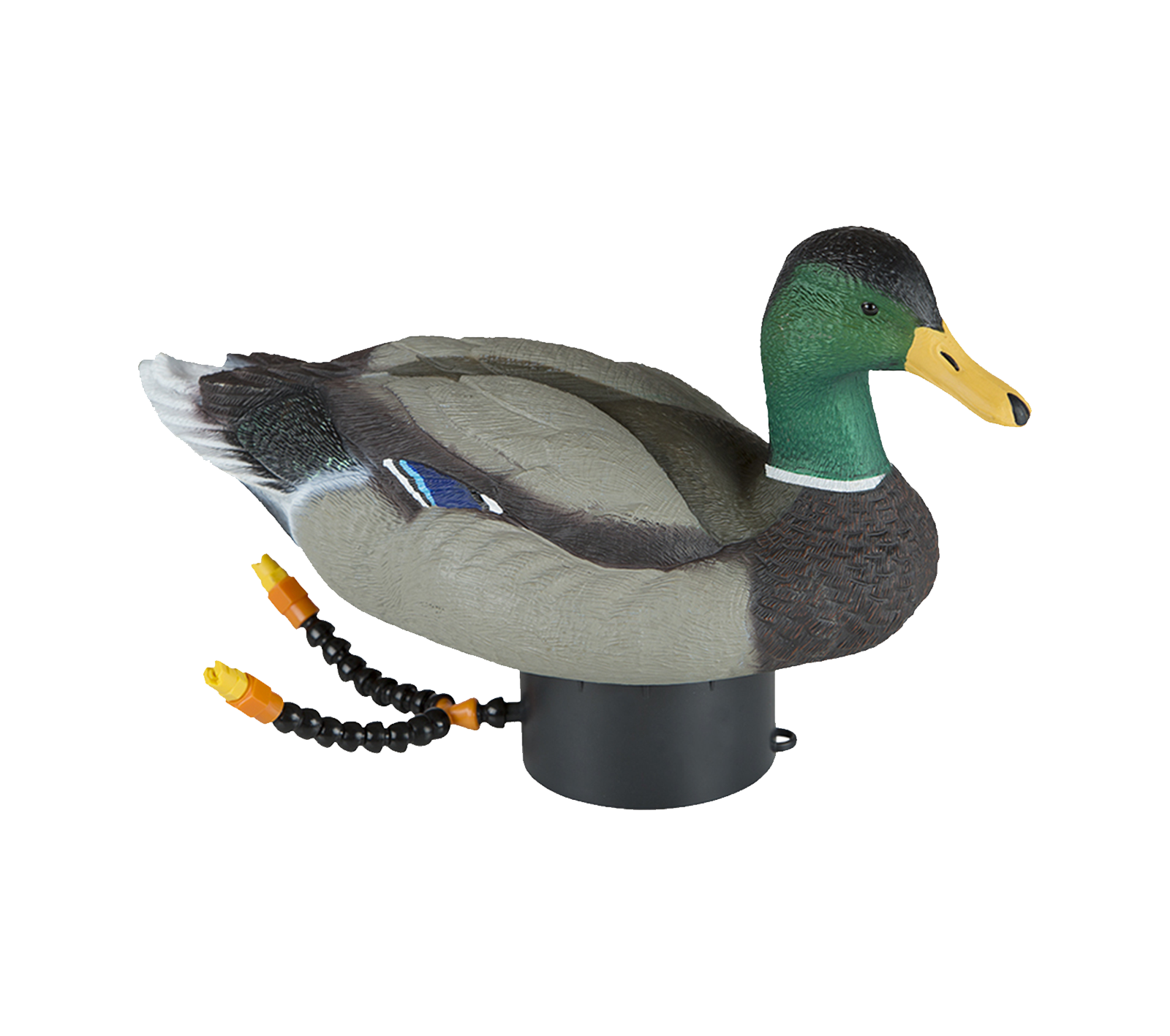 Lucky Duck Super Swimmer HD - Duck Hunting PNG HD