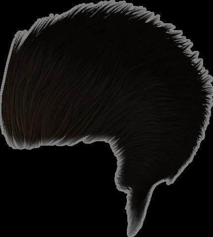 File:Dead rising Brown Hair Dye.png - Dye PNG