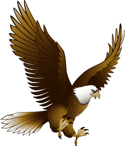 Eagle PNG - 26766
