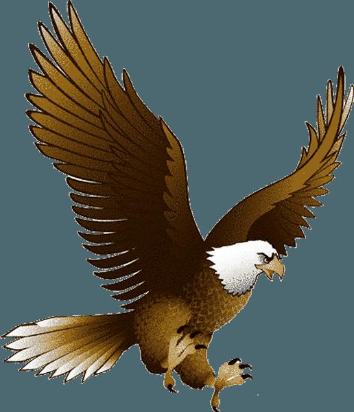 Eagle PNG image, free downloa