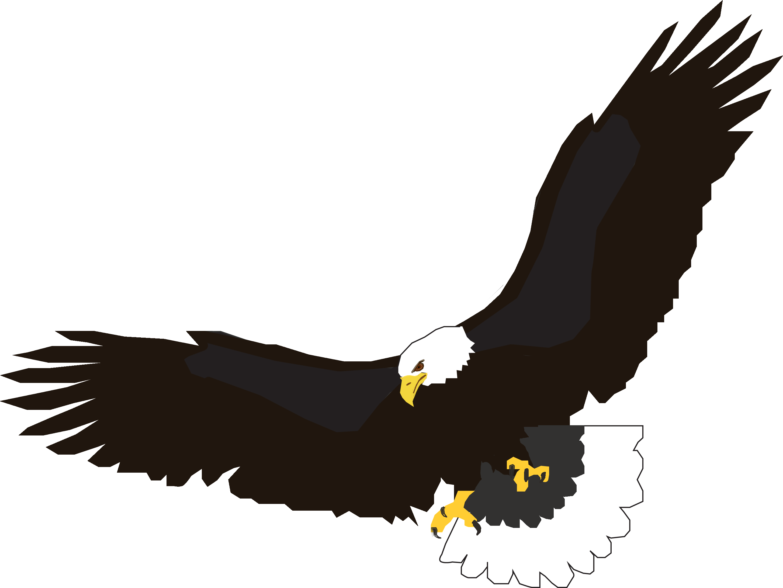 Flying Eagle Png Image Download PNG Image - Eagle PNG