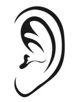 Ear PNG - 6713
