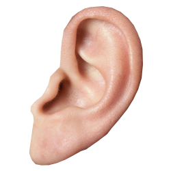 Ear Listening PNG HD