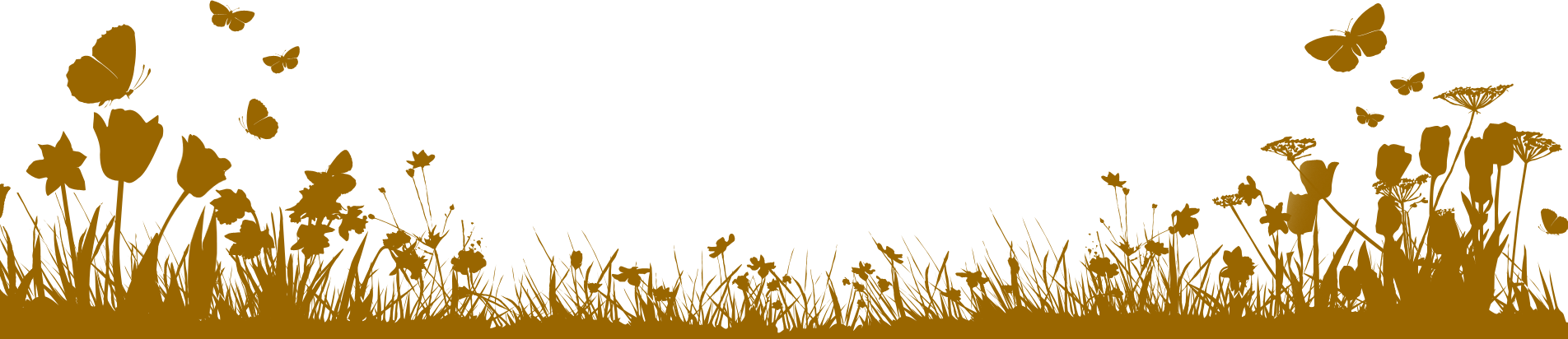 Wild Flower Border Gold - Edging PNG
