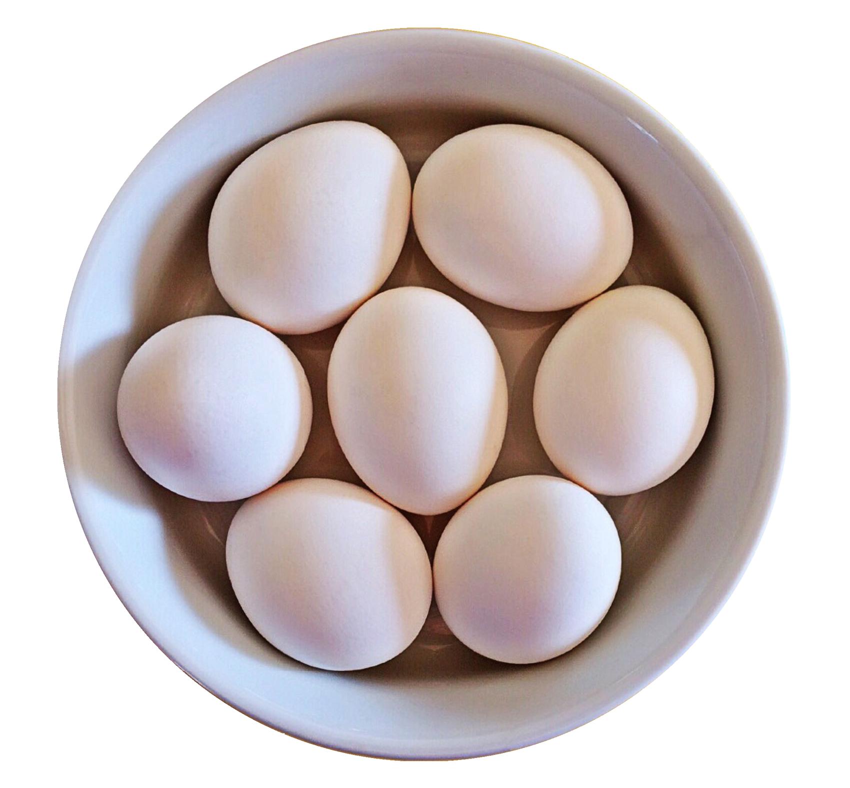 Egg HD PNG - 94560