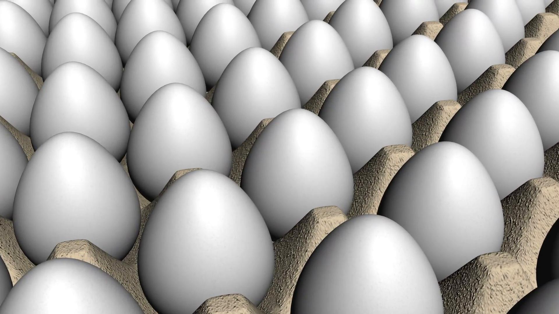 Egg HD PNG - 94566