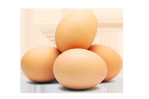 Egg HD PNG - 94563