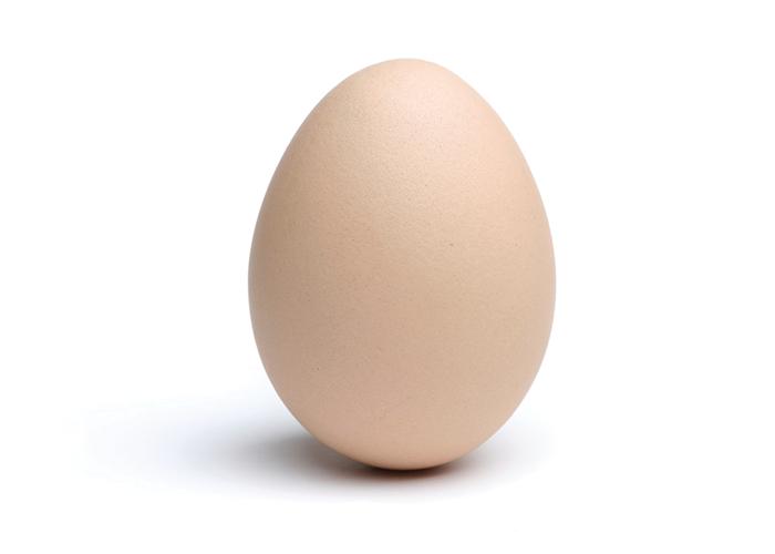 Egg HD PNG - 94558
