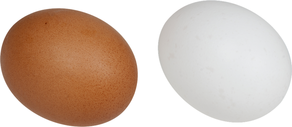 Eggs, White, Brown, Food, Breakfast, Chicken, Bird - Egg HD PNG